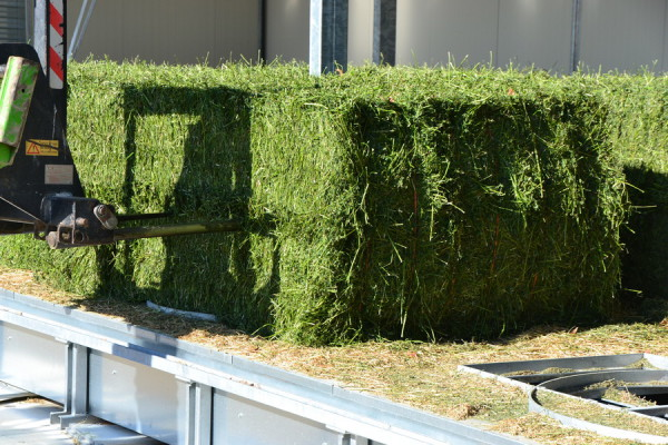 square bales, hay dryer COMPACT, AgriCompact hay dryer, Hay Dryers Compact, haydrers, round bales, square bales, horse hay, hay for dairy cows, goat, sheep